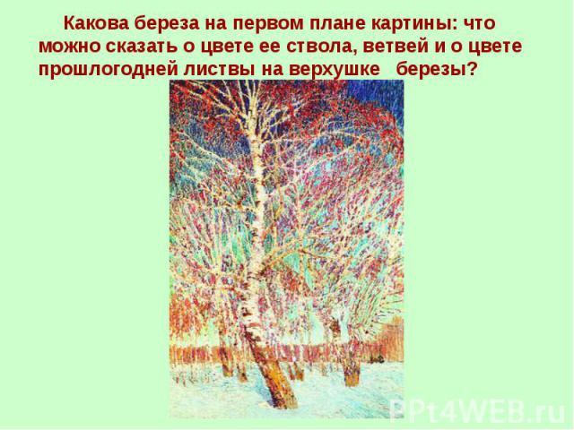 Какова береза на первом плане картины: что можно сказать о цвете ее ствола, ветвей и о цвете прошлогодней листвы на верхушке березы?