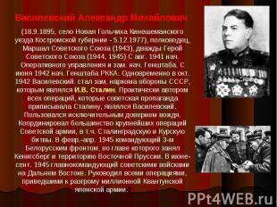 Василевский Александр Михайлович (18.9.1895, село Новая Гольчиха Кинешеманского