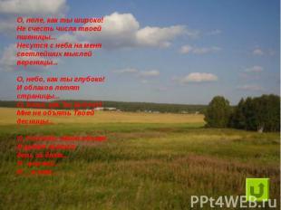 О, поле, как ты широко!Не счесть числа твоей пшеницы...Несутся с неба на менясве