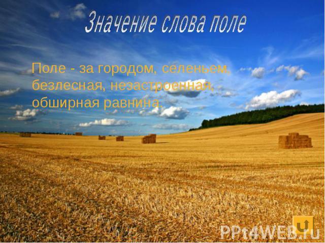 Значение слова поле Поле - за городом, селеньем, безлесная, незастроенная, обширнаяравнина.