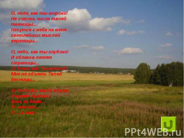 О, поле, как ты широко!Не счесть числа твоей пшеницы...Несутся с неба на менясветлейших мыслей вереницы...О, небо, как ты глубоко!И облаков летят страницы...О, Боже, как Ты высоко!Мне не объять Твоей десницы...О, Господи, какой объем!И время льется …