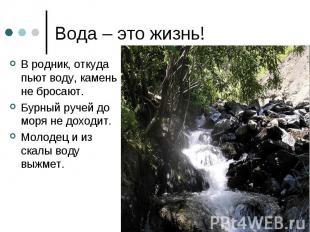 Вода – это жизнь! В родник, откуда пьют воду, камень не бросают.Бурный ручей до