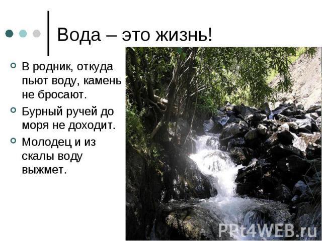 Вода – это жизнь! В родник, откуда пьют воду, камень не бросают.Бурный ручей до моря не доходит.Молодец и из скалы воду выжмет.
