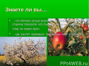 Знаете ли вы… …что яблоки лучше всего есть в вечернее время. В старину говорили: