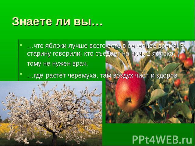 Знаете ли вы… …что яблоки лучше всего есть в вечернее время. В старину говорили: кто съедает на ночь 2 яблока, тому не нужен врач. …где растёт черёмуха, там воздух чист и здоров