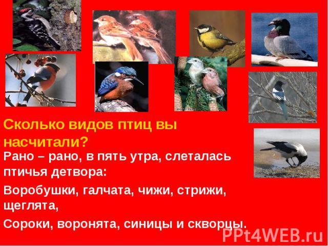 Сколько видов птиц вы насчитали? Рано – рано, в пять утра, слеталась птичья детвора:Воробушки, галчата, чижи, стрижи, щеглята,Сороки, воронята, синицы и скворцы.