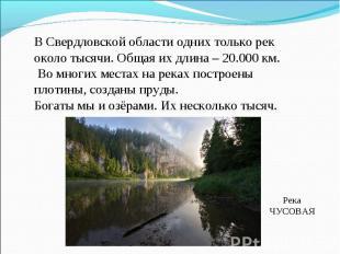В Свердловской области одних только рек около тысячи. Общая их длина – 20.000 км