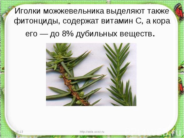 Иголки можжевельника выделяют также фитонциды, содержат витамин С, а кора его — до 8% дубильных веществ.