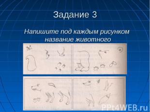 Задание 3 Напишите под каждым рисунком название животного