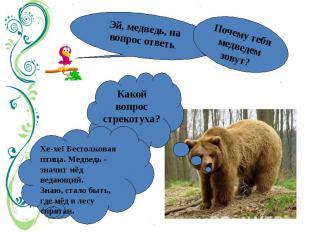 Эй, медведь, на вопрос ответь.Почему тебя медведем зовут? Какой вопрос стрекотух