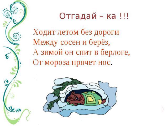 Отгадай – ка !!! Ходит летом без дорогиМежду сосен и берёз, А зимой он спит в берлоге,От мороза прячет нос.