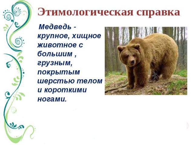 Этимологическая справка Медведь - крупное, хищное животное с большим , грузным, покрытым шерстью телом и короткими ногами.