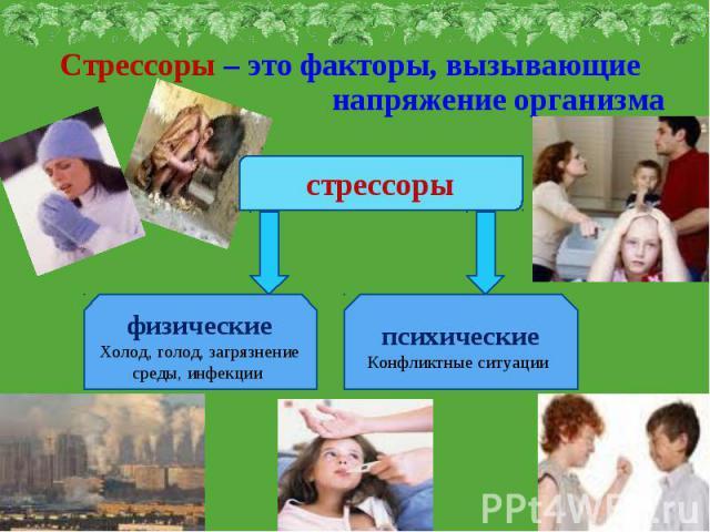 Стрессоры – это факторы, вызывающие напряжение организмастрессорыфизическиеХолод, голод, загрязнение среды, инфекции психическиеКонфликтные ситуации