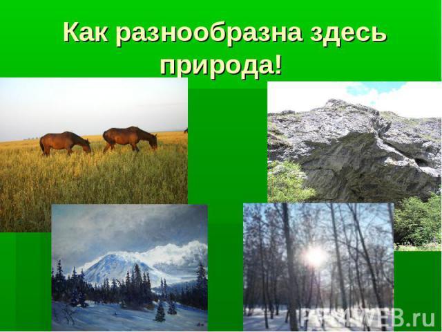Как разнообразна здесь природа!