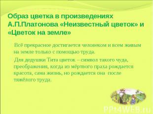 Образ цветка в произведениях А.П.Платонова «Неизвестный цветок» и «Цветок на зем