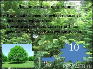 Дополнительная информация Взрослый человек потребляет около 20 литров кислорода