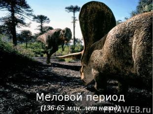 Меловой период(136-65 млн. лет назад)