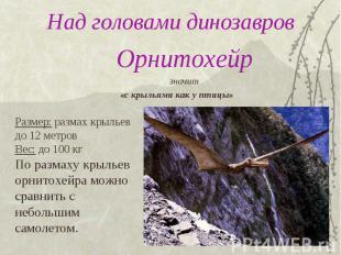 Над головами динозавров Орнитохейрзначит «с крыльями как у птицы»Размер: размах
