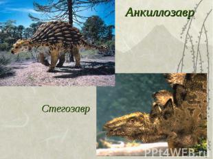 АнкиллозаврСтегозавр