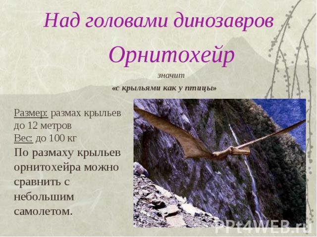 Над головами динозавров Орнитохейрзначит «с крыльями как у птицы»Размер: размах крыльев до 12 метровВес: до 100 кгПо размаху крыльеворнитохейра можно сравнить с небольшим самолетом.