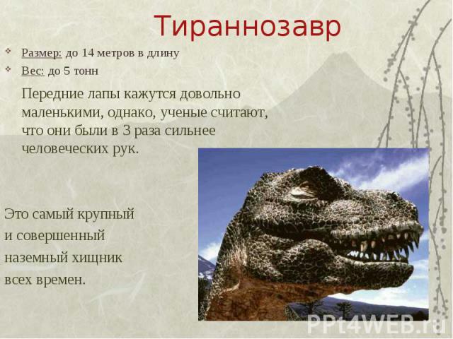 Тираннозавр Размер: до 14 метров в длинуВес: до 5 тоннПередние лапы кажутся довольно маленькими, однако, ученые считают, что они были в 3 раза сильнее человеческих рук.Это самый крупный и совершенный наземный хищник всех времен.