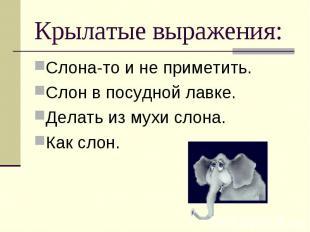 Крылатые выражения: Слона-то и не приметить.Слон в посудной лавке.Делать из мухи