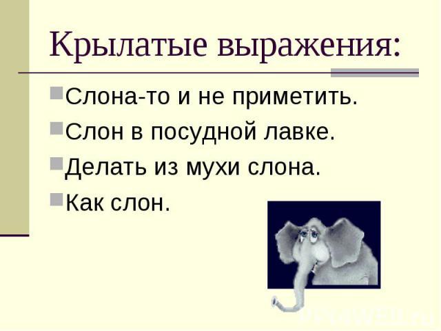 Крылатые выражения: Слона-то и не приметить.Слон в посудной лавке.Делать из мухи слона.Как слон.