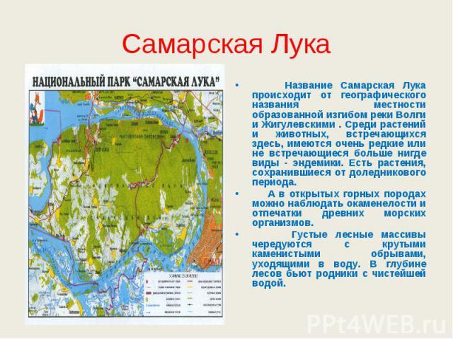 Самарская Лука Название Самарская Лука происходит от географического названия местности образованной изгибом реки Волги и Жигулевскими . Среди растений и животных, встречающихся здесь, имеются очень редкие или не встречающиеся больше нигде виды - эн…