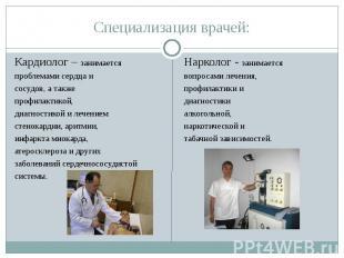 Специализация врачей: Кардиолог – занимаетсяпроблемами сердца исосудов, а также