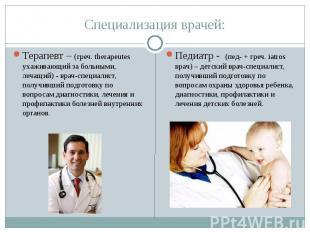 Специализация врачей: Терапевт – (греч. therapeutes ухаживающий за больными, леч