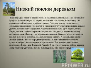 Низкий поклон деревьям Наши предки славяне жили в лесу. В самом прямом смысле. Л