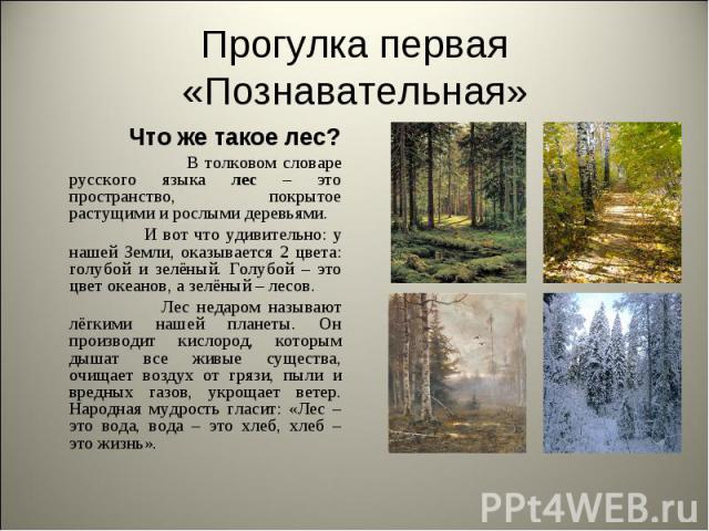Прогулка первая «Познавательная» Что же такое лес? В толковом словаре русского языка лес – это пространство, покрытое растущими и рослыми деревьями. И вот что удивительно: у нашей Земли, оказывается 2 цвета: голубой и зелёный. Голубой – это цвет оке…