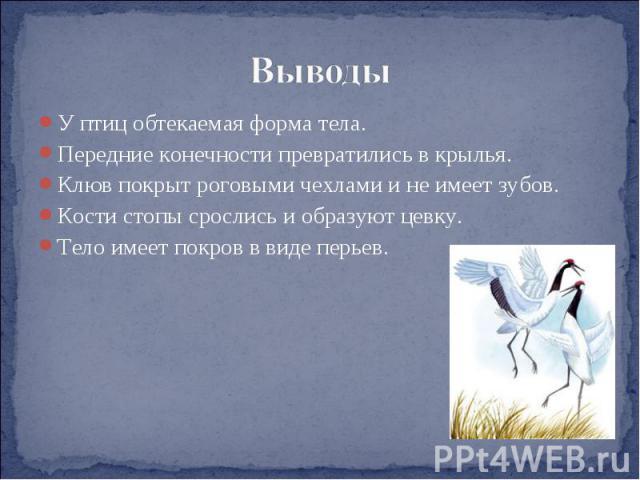 Выводы У птиц обтекаемая форма тела.Передние конечности превратились в крылья.Клюв покрыт роговыми чехлами и не имеет зубов.Кости стопы срослись и образуют цевку.Тело имеет покров в виде перьев.