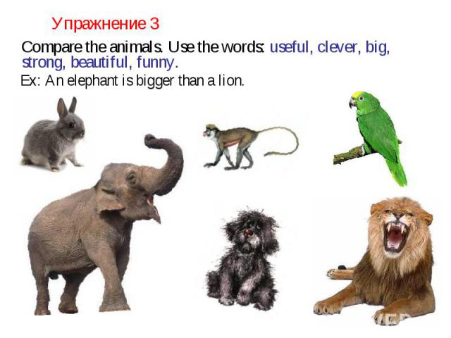 Упражнение 3 Compare the animals. Use the words: useful, clever, big, strong, beautiful, funny. Ex: An elephant is bigger than a lion.