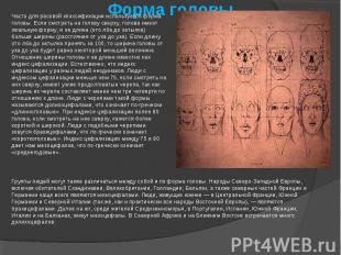 Форма головыЧасто для расовой классификации используется форма головы. Если смот