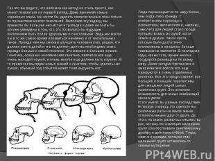 Так что вы видите, что евгеника как метод не столь проста, как может показаться