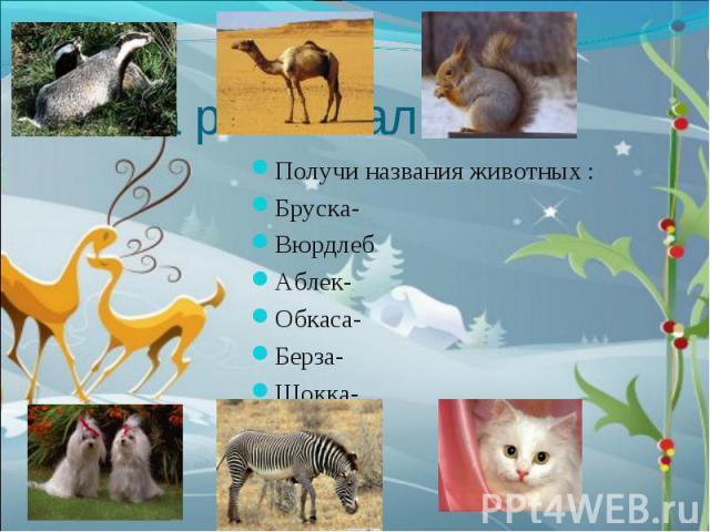 Получи названия животных :Бруска-ВюрдлебАблек-Обкаса-Берза-Шокка-