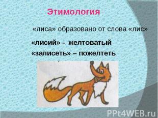 Этимология«лиса» образовано от слова «лис»«лисий» - желтоватый «залисеть» – поже