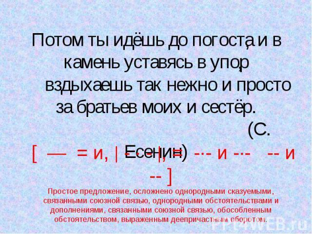 Потом ты идёшь до погоста и в камень уставясь в упор вздыхаешь так нежно и просто за братьев моих и сестёр. (С. Есенин) [ — = и, - · - , = -·- и -·- -- и -- ]Простое предложение, осложнено однородными сказуемыми, связанными союзной связью, однородны…