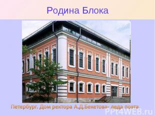 Родина Блока Петербург. Дом ректора А.Д.Бекетова- деда поэта.