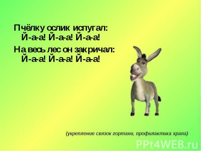 Пчёлку ослик испугал:Й-а-а! Й-а-а! Й-а-а!На весь лес он закричал:Й-а-а! Й-а-а! Й-а-а!(укрепление связок гортани, профилактика храпа)