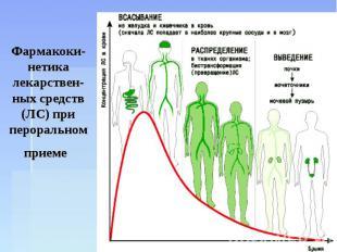 Фармакоки-нетика лекарствен-ных средств (ЛС) при пероральном приеме