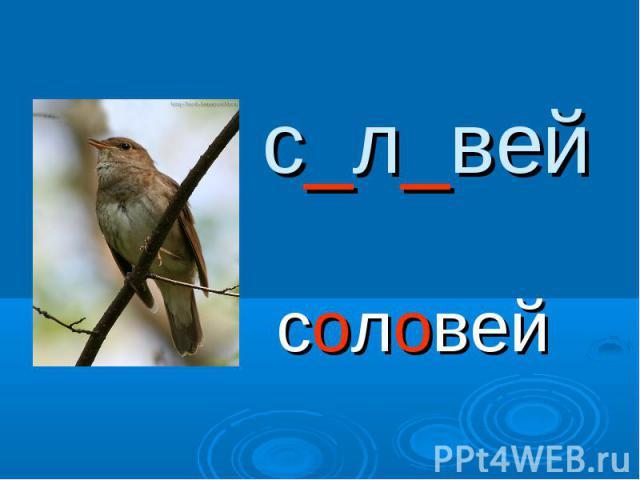 с_л_вейсоловей
