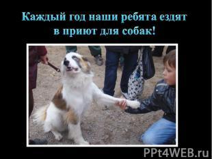 Каждый год наши ребята ездят в приют для собак!
