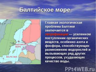 Балтийское море Главная экологическая проблема Балтики заключается в эвтрофикаци