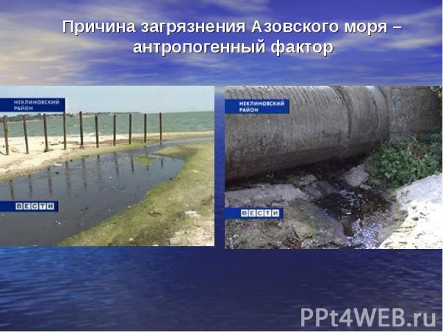 Причина загрязнения Азовского моря – антропогенный фактор