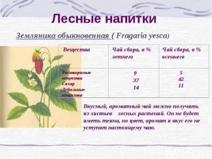 Лесные напитки Земляника обыкновенная ( Fragaria yesca) Вкусный, ароматный чай