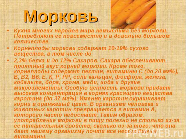 Морковь Кухня многих народов мира немыслима без моркови. Потребляют ее повсеместно и в довольно большом количестве. Корнеплоды моркови содержат 10-19% сухого вещества, в том числе до2,3% белка и до 12% Сахаров. Сахара обеспечивают приятный вкус корн…