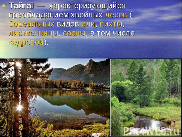 Тайга— характеризующийся преобладанием хвойных лесов (бореальных видов ели, пихты, лиственницы, сосны, в том числе кедровой).