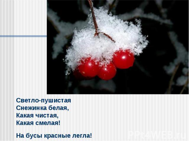 Светло-пушистая Снежинка белая,Какая чистая, Какая смелая! На бусы красные легла!